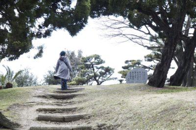 堺の街中で、日本一の山に登る